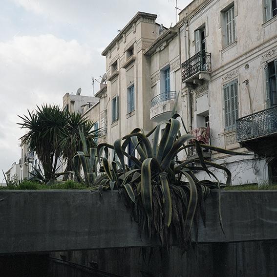 http://beataszparagowska.com/files/gimgs/th-38_Tunis_08.jpg